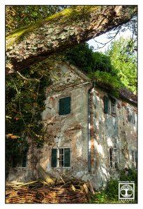 verlassenes Haus, verlassenes Gebäude, altes haus