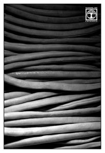 abstrakte fotografie, punkt linie fläche fotografie, linien fotografie, bohnen schwarzweiss, Bohnen stillleben