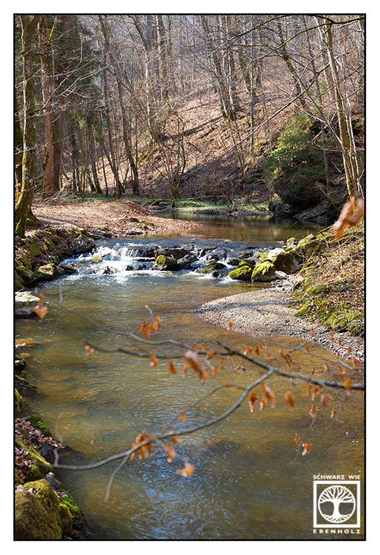 Maisinger Schlucht, Maising, river spring, river, spring, springtime