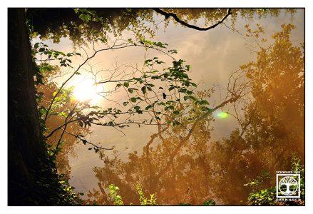 surrealism, surreal photo, surreal photography, reflection water, reflection lake