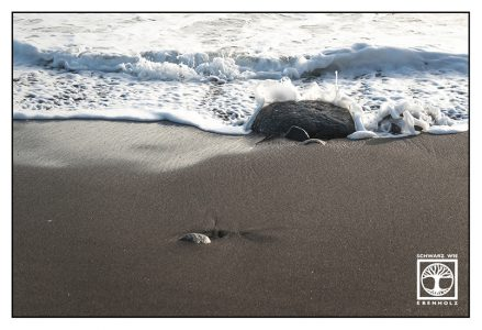 stones water, stones beach, black beach, waves