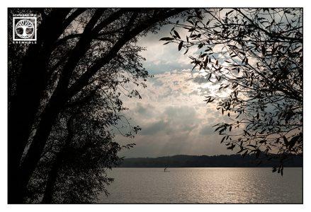 sunset lake, light darkness, lake starnberg, starnberg, stand up paddle, sup