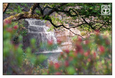 waterfall spring, japanese garden, japanese garden kaiserslautern, kaiserslautern