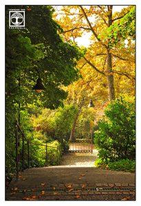 Lindau, autumn, autumn stairs, autumn way, Bavaria, Germany