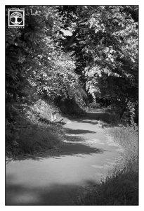 park schwarzweiss, weg schwarzweiss