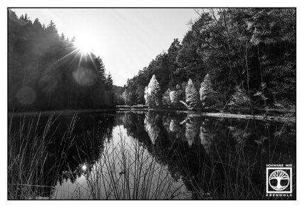 lake blackandwhite, reflections blackandwhite, Gelterswoog, blackandwhite photography