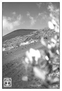 La Palma, Fuencaliente, Vulkan, Vulkanlandschaft, Vulkan schwarzweiss