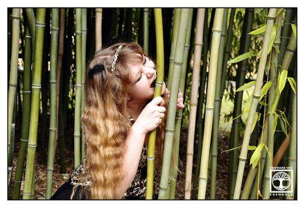 funny outtakes photoshoot, bamboo photoshoot, panda photoshoot