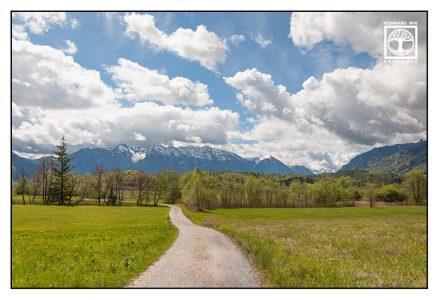 Murnau, Murnauer Moos, marsh, mountains, bavaria, germany, walking way