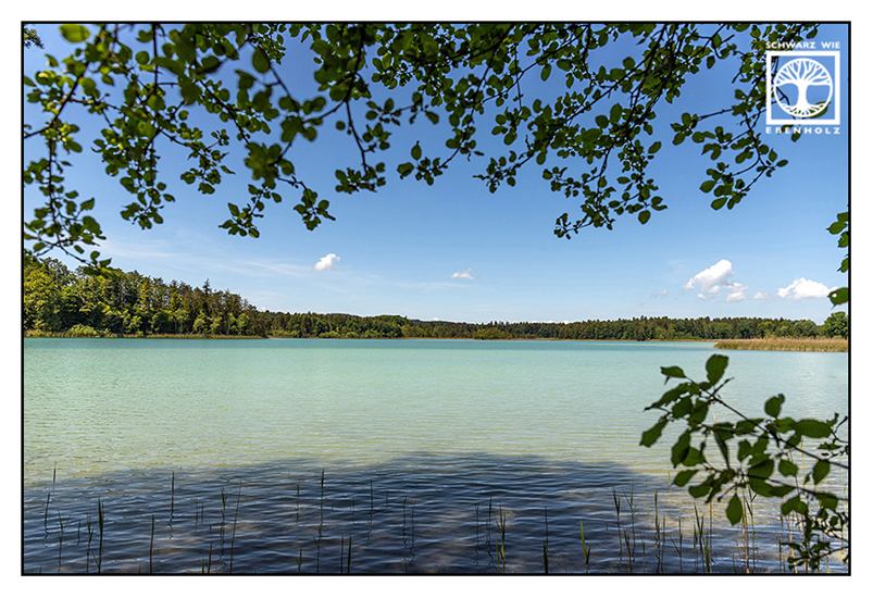 Ostersee, lake in spring, lake, spring