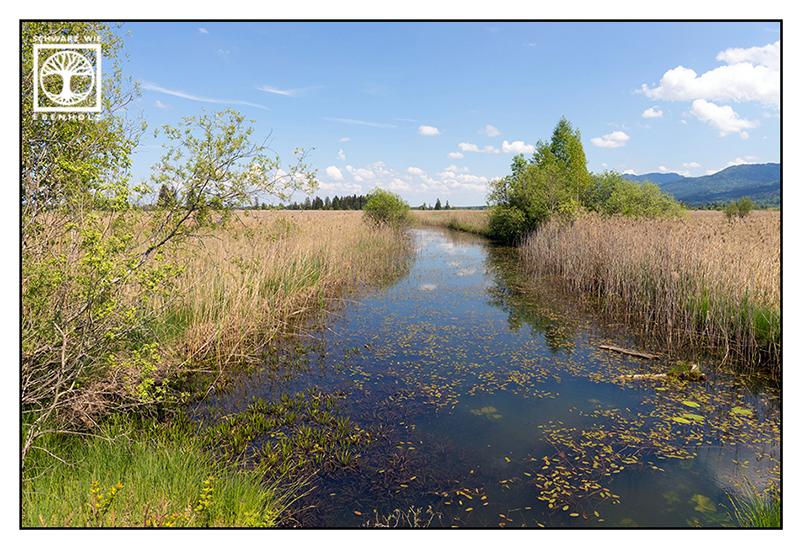 Loisach, river, river in spring