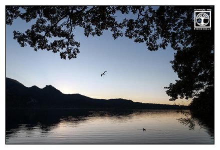 kochel, lake kochel, sunset lake, lake reflections