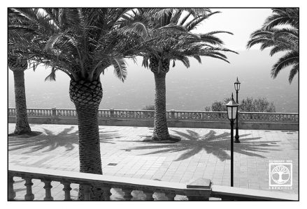 santo domingo, garafia, black and white palms, black and white square, la palma
