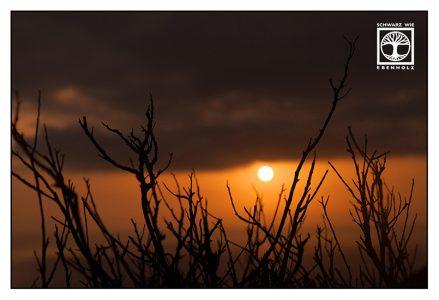sunset, sundown, orange sunset