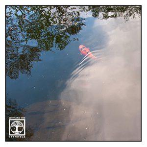 Koi, Goldfisch, Surrealismus, surreale fotografie, reflexionen wasser, reflexionen see, Spiegelung wasser, Spiegelung see