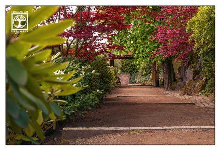 Japanischer Garten Kaiserslautern, Japanischer Garten, Kaiserslautern, Weg Herbst