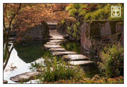 Japanese Garden, Kaiserslautern, Germany, Japanese Garden Kaiserslautern