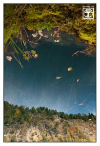 reflections water, reflections lake, surrealism, surreal photo, surreal photography