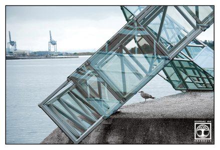 Möwe, Hafen, Oslo Hafen, Oslo, Norwegen
