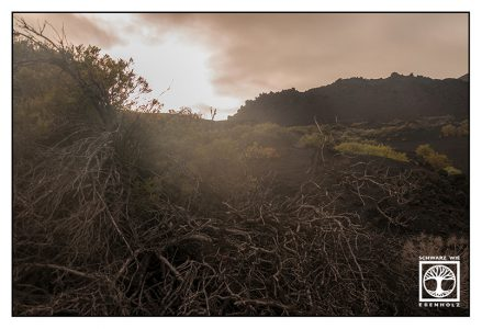 la palma, fuencaliente, volcano, volcanic landscape, backlight