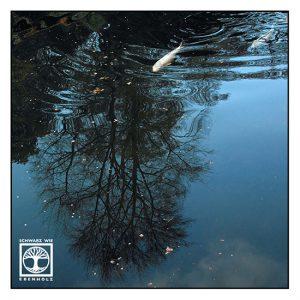 Surrealismus, Surreale Fotografie, Reflexion Wasser, Spiegelung Wasser, Spiegelung see, koi, Japanischer Garten Kaiserslautern