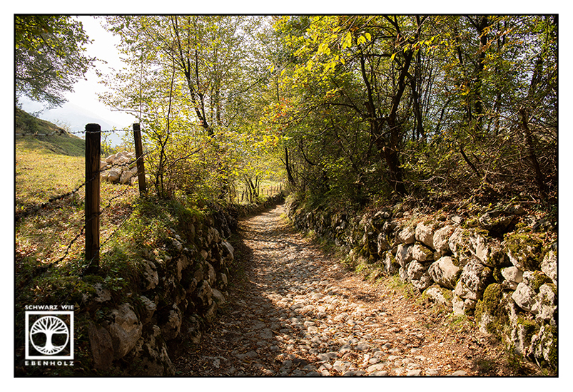 Italy, Monte Baldo, Mount Baldo, hiking path, summer