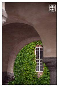 Stockholm, Stockholm Rathaus, fenster eingewachsen