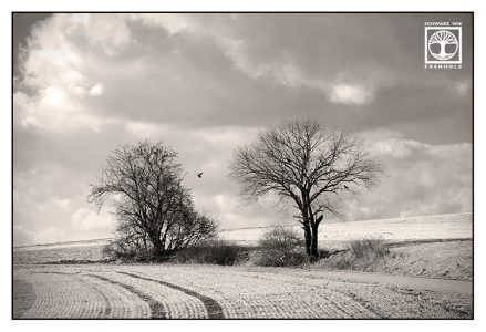 rural landscape, countryside, fields, fields black and white, bavaria germany, allgäu
