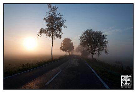 foggy road, country road, sunrise road, Allgäu, Bavaria, Germany, vanishing point photography, perspective photography