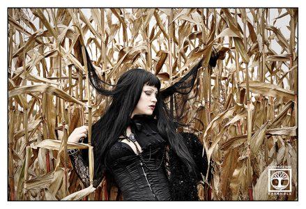 goth photoshoot, goth photo shooting, cornfield photoshoot