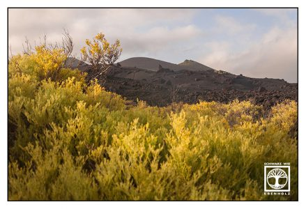 La Palma, Fuencaliente, volcano