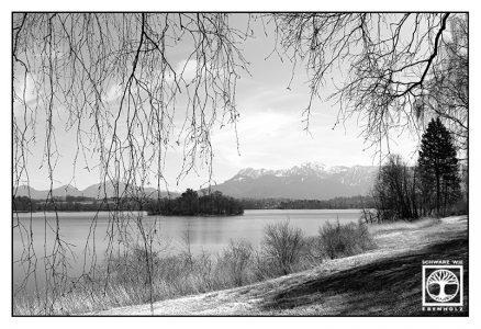 lake blackandwhite, staffellsee blackandwhite, staffelsee, lake staffel, blackandwhite photography