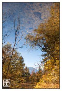 Surrealismus, Surreale Fotografie, Murnau, Murnauer Moos, Moor, murnauer moos herbst, reflexion wasser, reflexion see, spiegelung wasser, spiegelung see, Herbstwald
