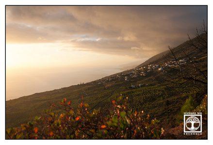 La Palma, Fuencaliente, wine fields, sunset valley