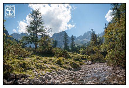Ehrwald, gebirgsbach herbst, wald berge herbst