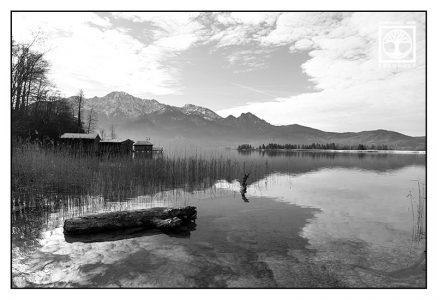 lake blackandwhite, kochelsee blackandwhite, kochelsee, lake kochel, blackandwhite photography
